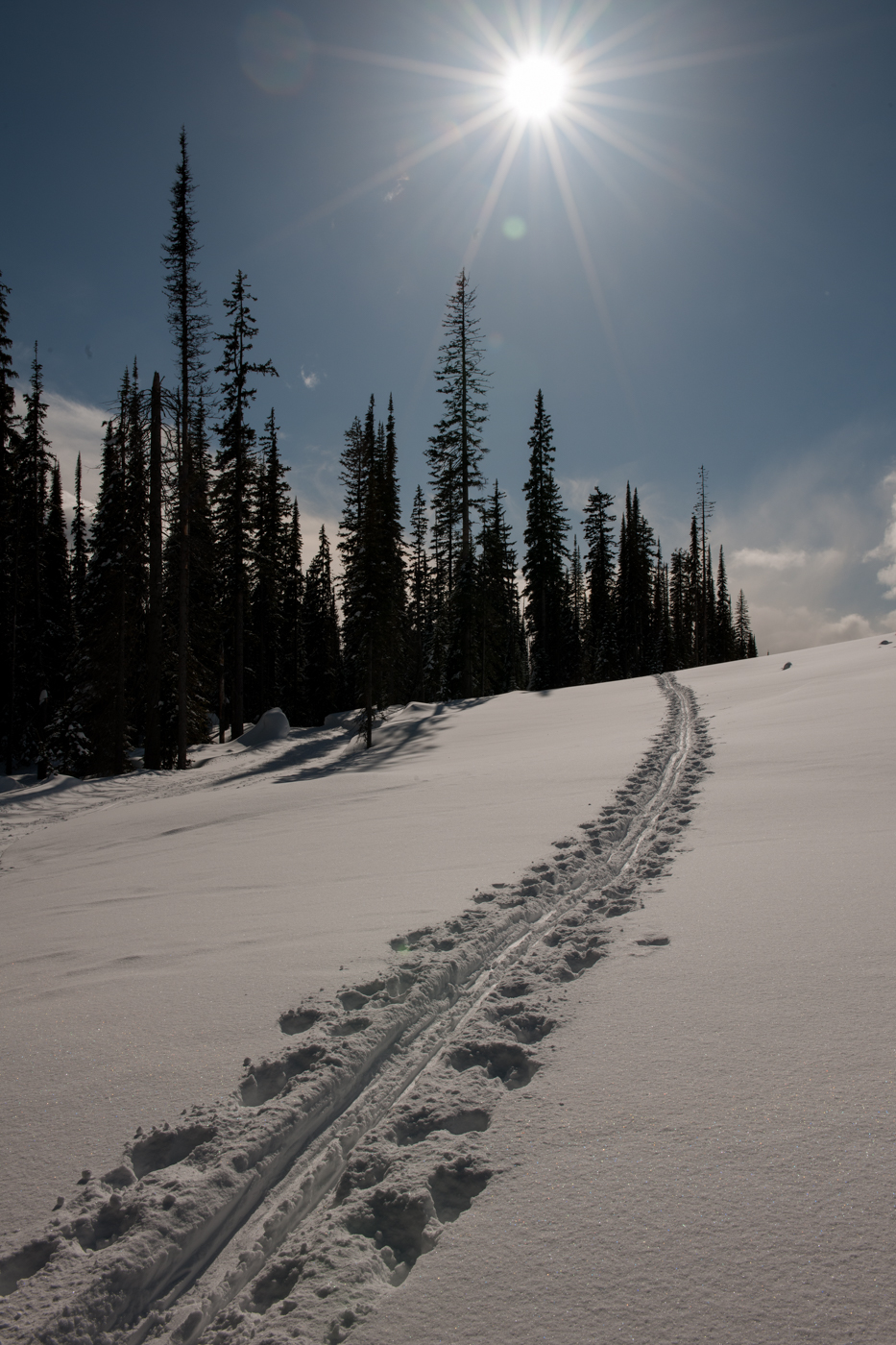 Late-Afternoon-Trail
